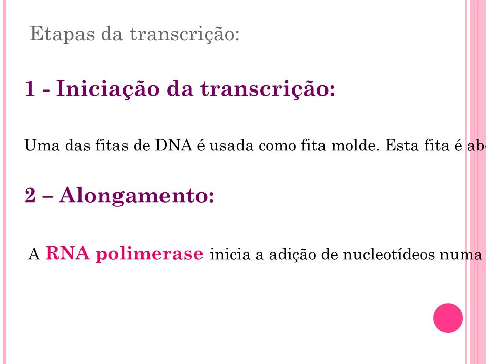 Etapas da transcrição: 1 - Iniciação da transcrição: Uma das fitas de DNA é usada como fita molde. Esta fita é aberta e as bases são expostas. 2 – Alo