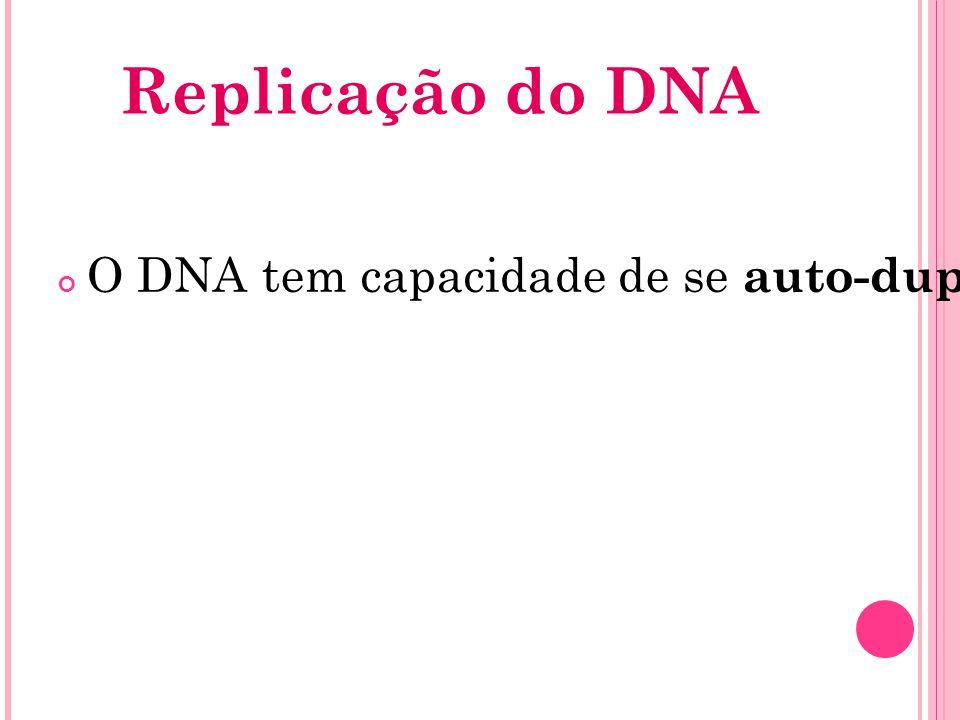 Este processo consiste na abertura de uma molécula de DNA parental com subsequente formação de duas novas moléculas filhas idênticas, cada uma contendo 50% da molécula mãe.