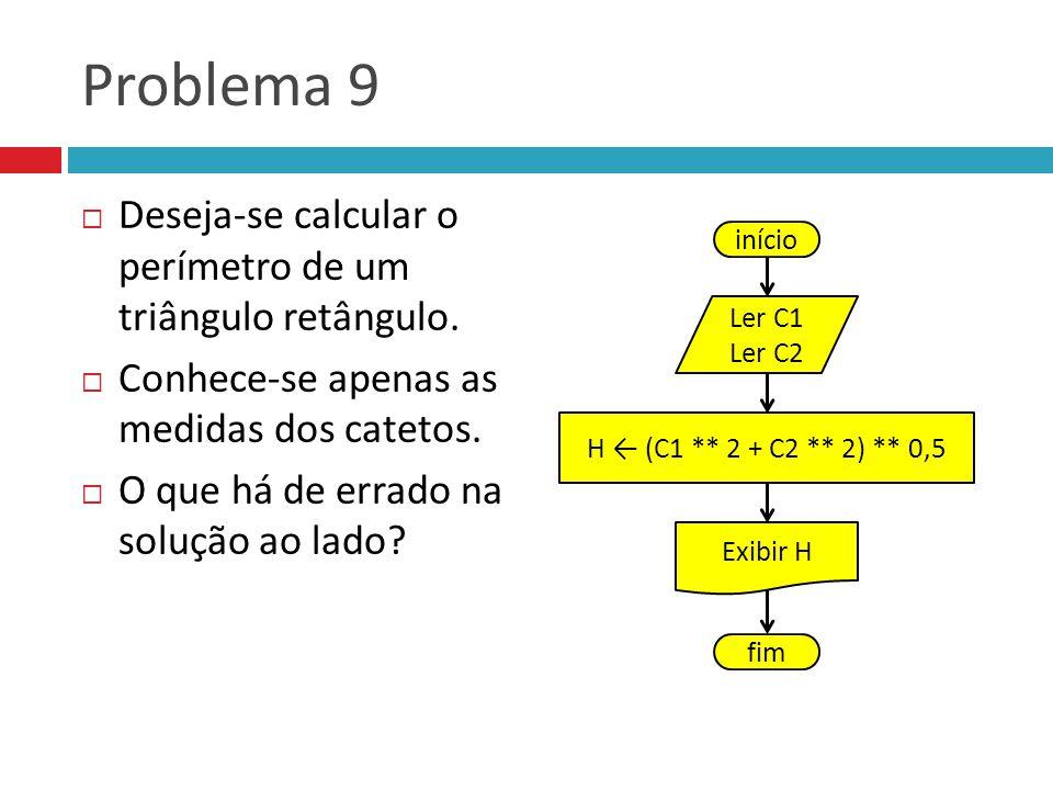 Problema 9 Deseja-se calcular o perímetro de um triângulo retângulo. Conhece-se apenas as medidas dos catetos. O que há de errado na solução ao lado?