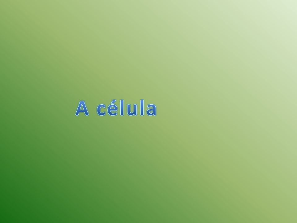 A principal característica da célula procariotante é a ausência de carioteca (estrutura que envolve o núcleo), pela ausência de alguns orgânicos (é usado para descrever várias estruturas com funções especializadas, delimitadas por uma membrana própria, suspensas no citoplasma das células vivas) e pelo pequeno tamanho que se acredita que se deve ao facto de não possuírem compartimentos membranosos.