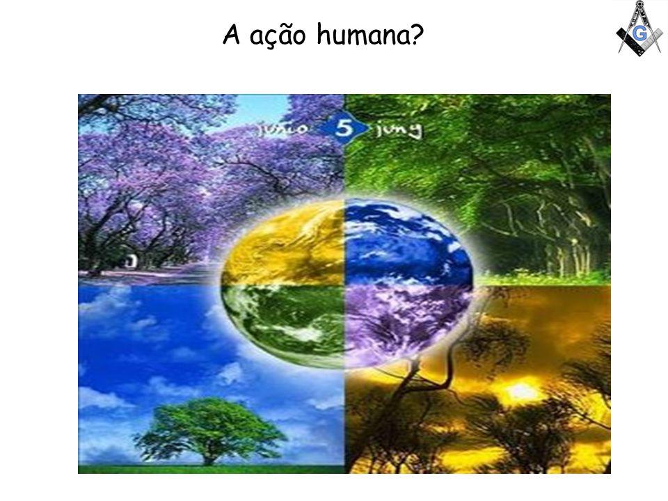 A ação humana?