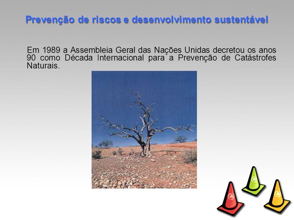Em 1989 a Assembleia Geral das Nações Unidas decretou os anos 90 como Década Internacional para a Prevenção de Catástrofes Naturais.