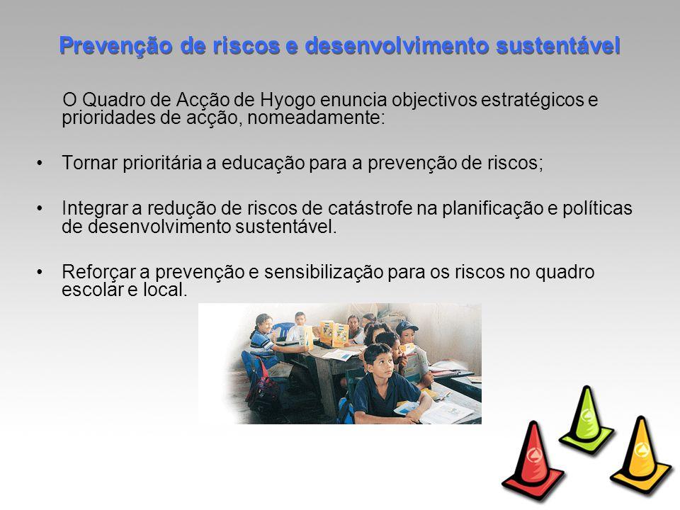 O Quadro de Acção de Hyogo enuncia objectivos estratégicos e prioridades de acção, nomeadamente: Tornar prioritária a educação para a prevenção de riscos; Integrar a redução de riscos de catástrofe na planificação e políticas de desenvolvimento sustentável.