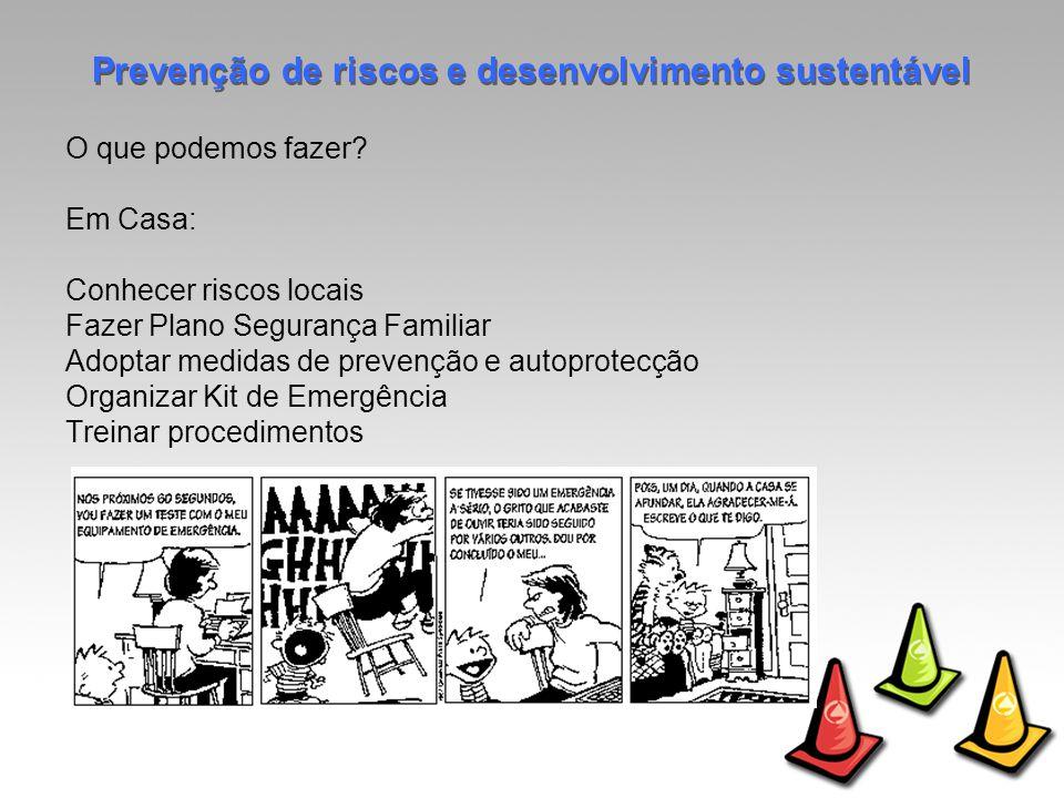 Prevenção de riscos e desenvolvimento sustentável O que podemos fazer.