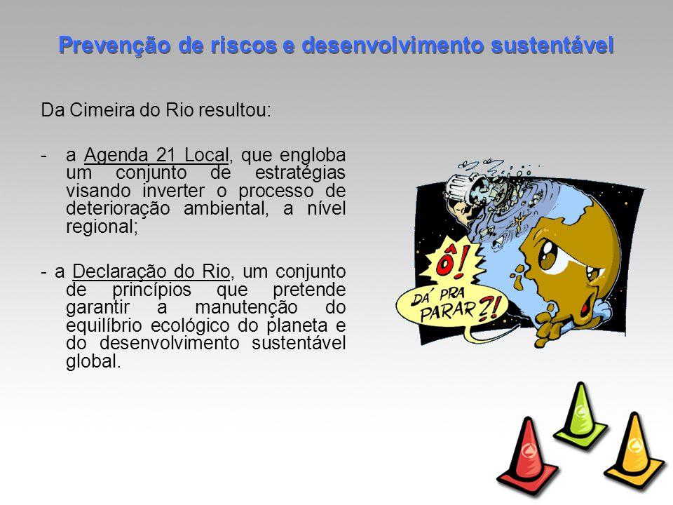 Da Cimeira do Rio resultou: -a Agenda 21 Local, que engloba um conjunto de estratégias visando inverter o processo de deterioração ambiental, a nível regional; - a Declaração do Rio, um conjunto de princípios que pretende garantir a manutenção do equilíbrio ecológico do planeta e do desenvolvimento sustentável global.