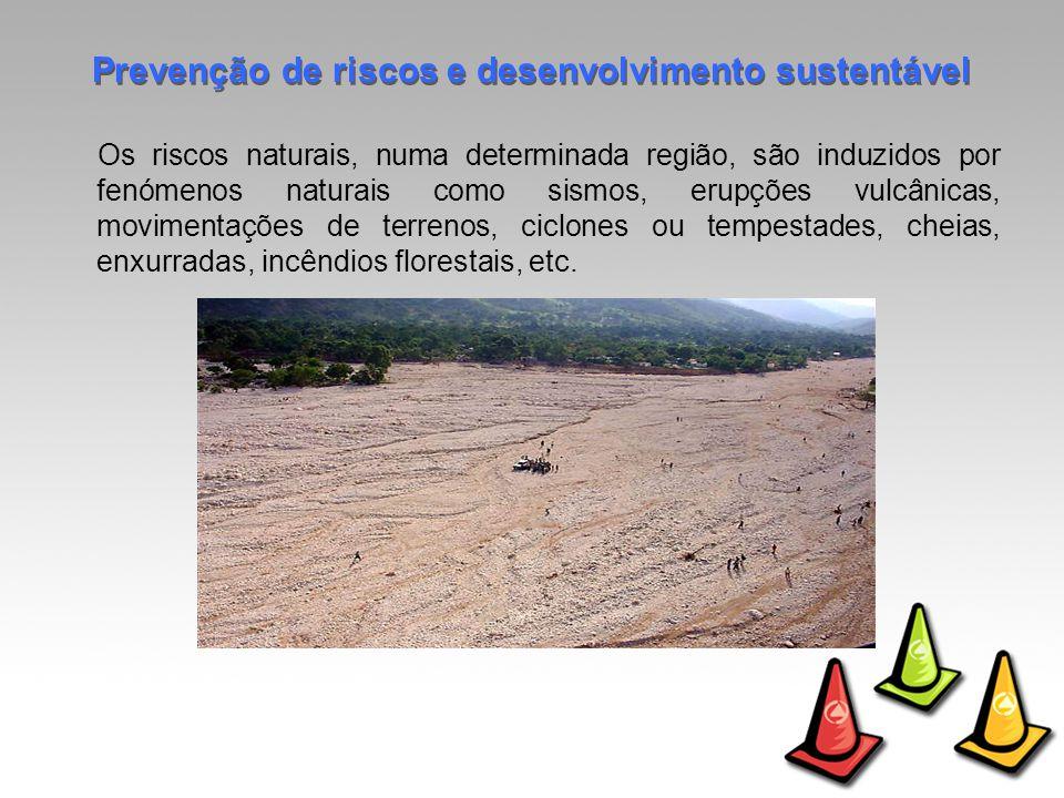 Os riscos naturais, numa determinada região, são induzidos por fenómenos naturais como sismos, erupções vulcânicas, movimentações de terrenos, ciclones ou tempestades, cheias, enxurradas, incêndios florestais, etc.