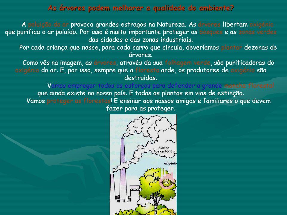 As árvores podem melhorar a qualidade do ambiente? A poluição do ar provoca grandes estragos na Natureza. As árvores libertam oxigénio que purifica o