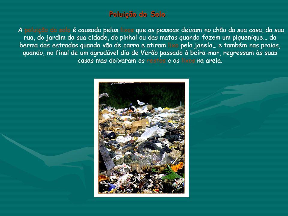 Poluição do Solo Poluição do Solo A poluição do solo é causada pelos lixos que as pessoas deixam no chão da sua casa, da sua rua, do jardim da sua cid
