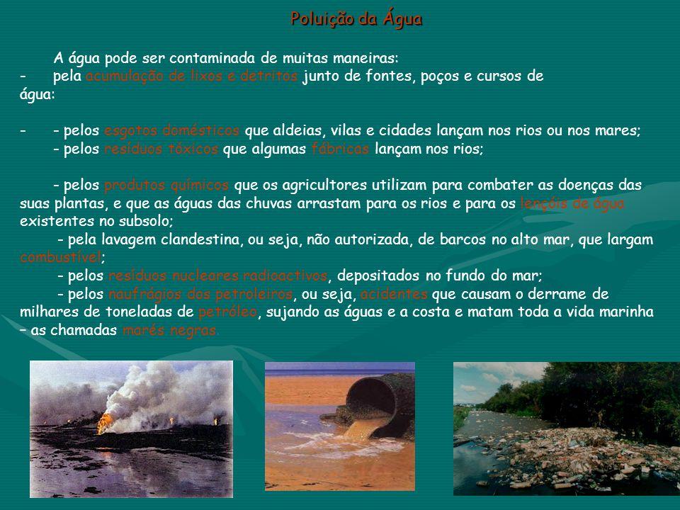 Poluição da Água A água pode ser contaminada de muitas maneiras: -pela acumulação de lixos e detritos junto de fontes, poços e cursos de água: -- pelo