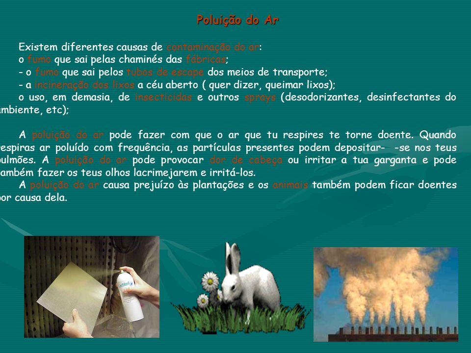 Poluição do Ar Existem diferentes causas de contaminação do ar: -o fumo que sai pelas chaminés das fábricas; -- o fumo que sai pelos tubos de escape d