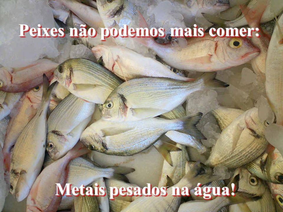Peixes não podemos mais comer: Metais pesados na água!