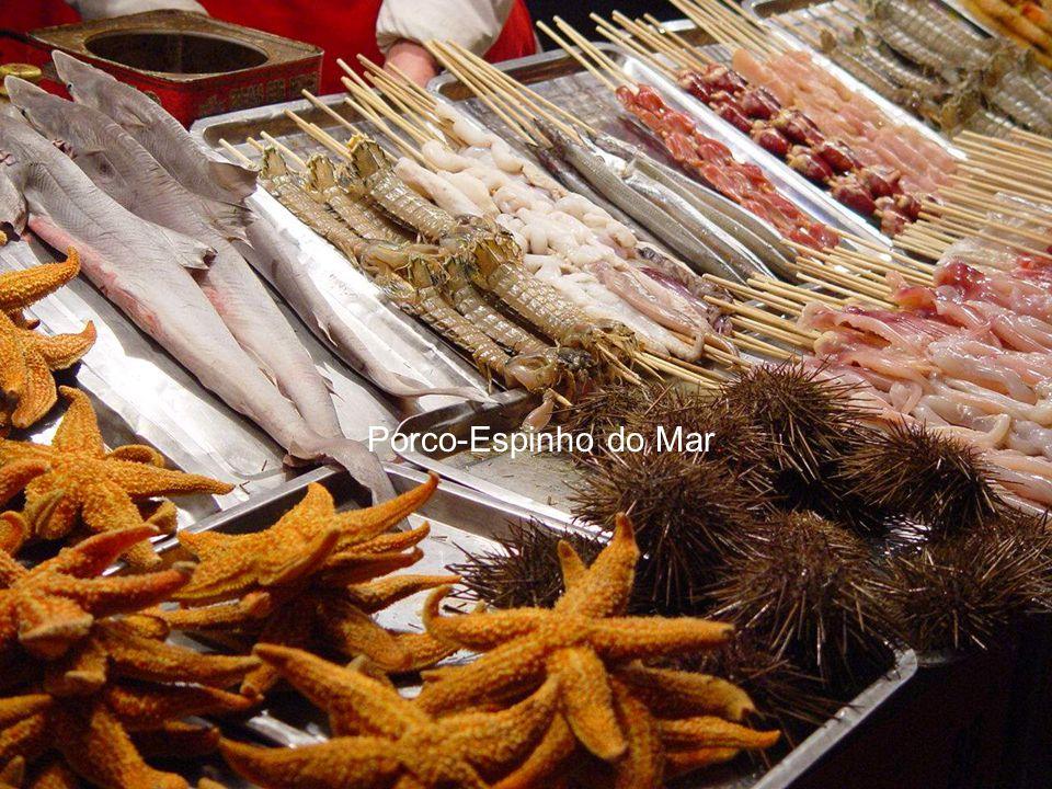 Ostras, calamares e Patas de iguana