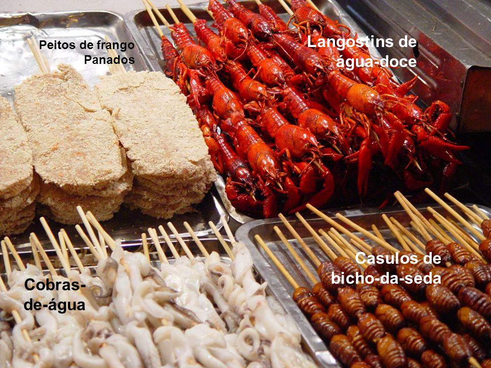 Peitos de frango Panados Cobras- de-água Casulos de bicho-da-seda Langostins de água-doce