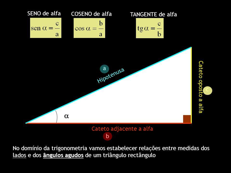 Cateto oposto a alfa Cateto adjacente a alfa Hipotenusa a b c SENO C O S E N O T A N G E N T E ATENÇÃO: Tangente de um ângulo e recta tangente são conceitos diferentes ( no 11º ano perceberão as afinidades entre estes dois conceitos) R a z ã o e n t r e a m e d i d a d o C A T E T O O P O S T O e a H I P O T E N U S A ( f o l g a o C a t e t o A d j a c e n t e ) R a z ã o e n t r e a m e d i d a d o C A T E T O A D J A C E N T E e a H I P O T E N U S A ( f o l g a o C a t e t o o p o s t o ) R a z ã o e n t r e o C A T E T O O P O S T O e o C A T E T O A D J A C E N T E ( f o l g a a h i p o t e n u s a )