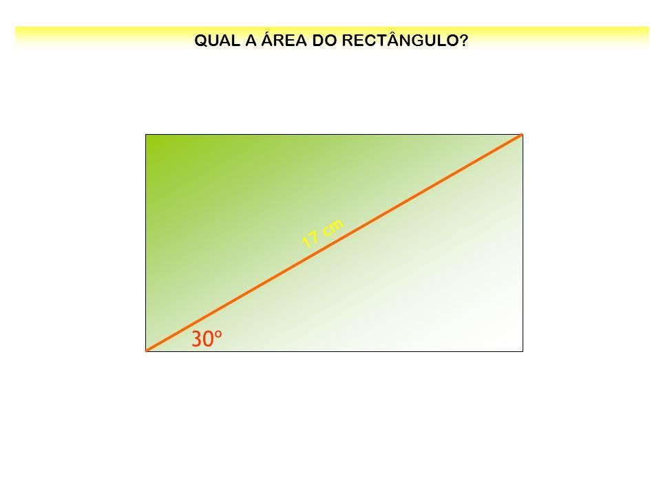 30º 17 cm QUAL A ÁREA DO RECTÂNGULO?