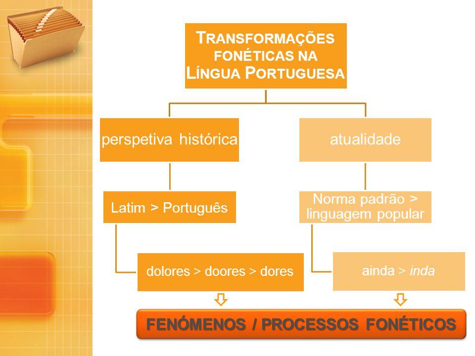 T RANSFORMAÇÕES FONÉTICAS NA L ÍNGUA P ORTUGUESA perspetiva histórica Latim > Português dolores > doores > dores atualidade Norma padrão > linguagem p