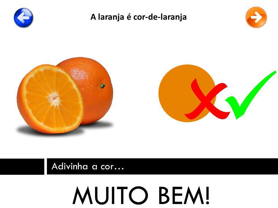 Adivinha a cor… MUITO BEM! A laranja é cor-de-laranja