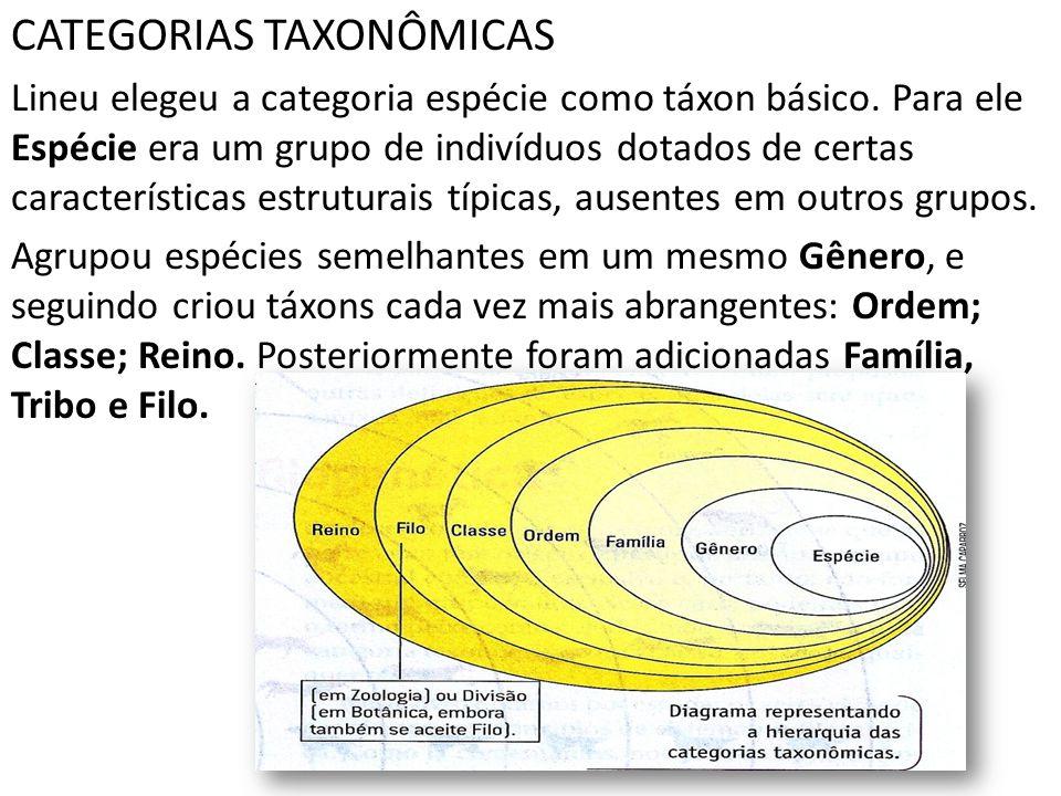 CATEGORIAS TAXONÔMICAS Lineu elegeu a categoria espécie como táxon básico. Para ele Espécie era um grupo de indivíduos dotados de certas característic