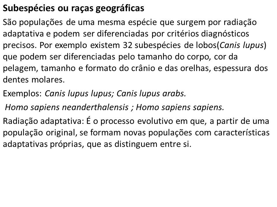 Subespécies ou raças geográficas São populações de uma mesma espécie que surgem por radiação adaptativa e podem ser diferenciadas por critérios diagnó