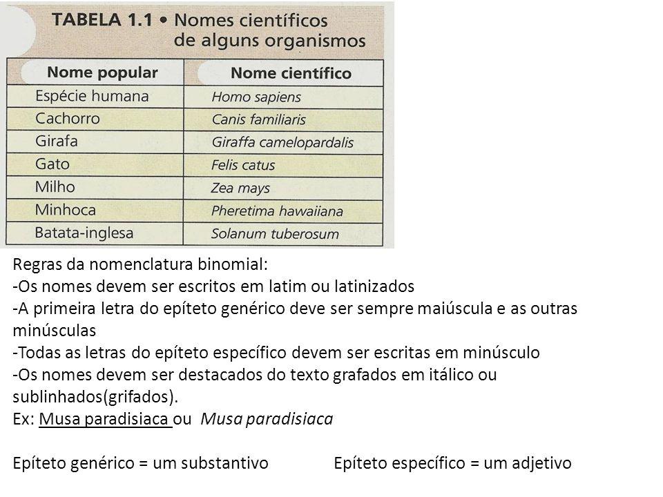 Regras da nomenclatura binomial: -Os nomes devem ser escritos em latim ou latinizados -A primeira letra do epíteto genérico deve ser sempre maiúscula