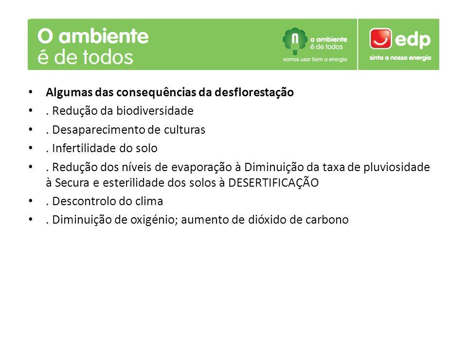 Algumas das consequências da desflorestação. Redução da biodiversidade. Desaparecimento de culturas. Infertilidade do solo. Redução dos níveis de evap