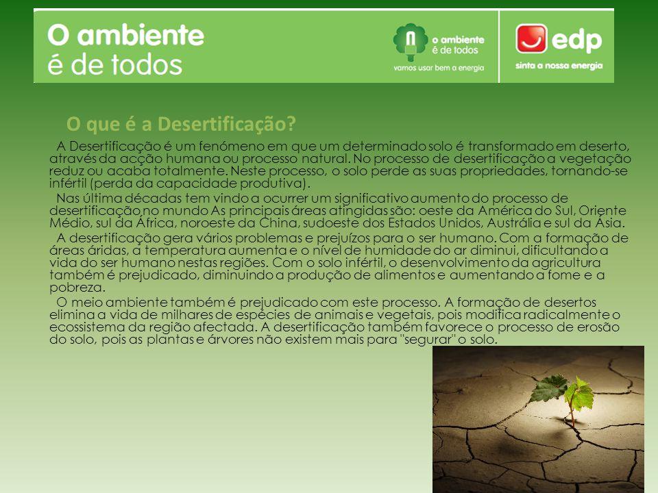 A Desertificação é um fenómeno em que um determinado solo é transformado em deserto, através da acção humana ou processo natural. No processo de deser