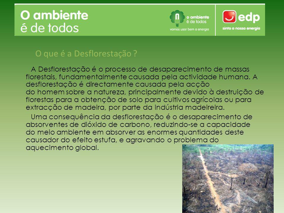 A Desflorestação é o processo de desaparecimento de massas florestais, fundamentalmente causada pela actividade humana. A desflorestação é directament