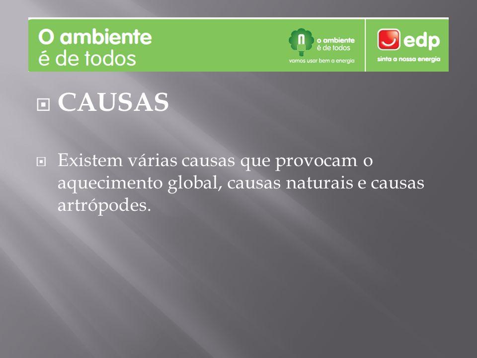CAUSAS Existem várias causas que provocam o aquecimento global, causas naturais e causas artrópodes.