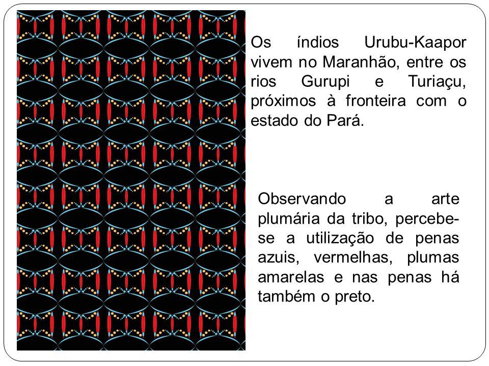 Os índios Urubu-Kaapor vivem no Maranhão, entre os rios Gurupi e Turiaçu, próximos à fronteira com o estado do Pará. Observando a arte plumária da tri