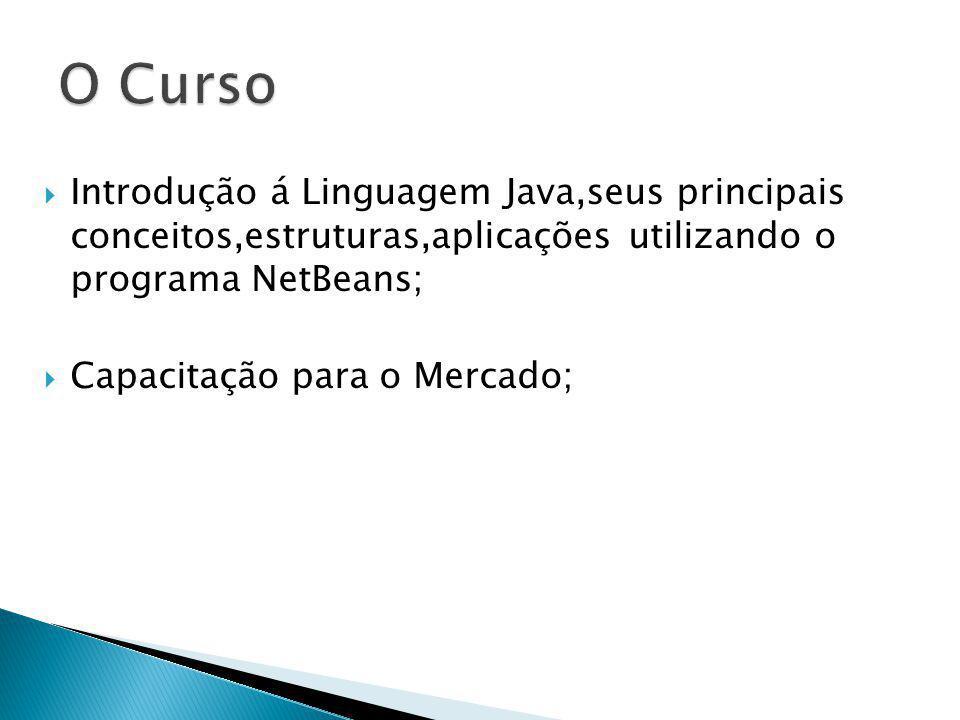 Introdução á Linguagem Java,seus principais conceitos,estruturas,aplicações utilizando o programa NetBeans; Capacitação para o Mercado;