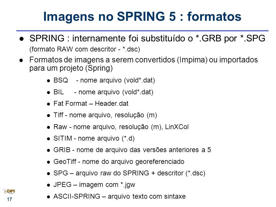 18 Parâmetros de Saída (Cursor) * Amostragem IMPIMA Parâmetros de Entrada - Aplicativo do SPRING utilizado para leitura de imagens em diversos formatos que serão armazenadas no formato SPG+DSC (com ou sem recorte) para posterior correção geométrica (registro).