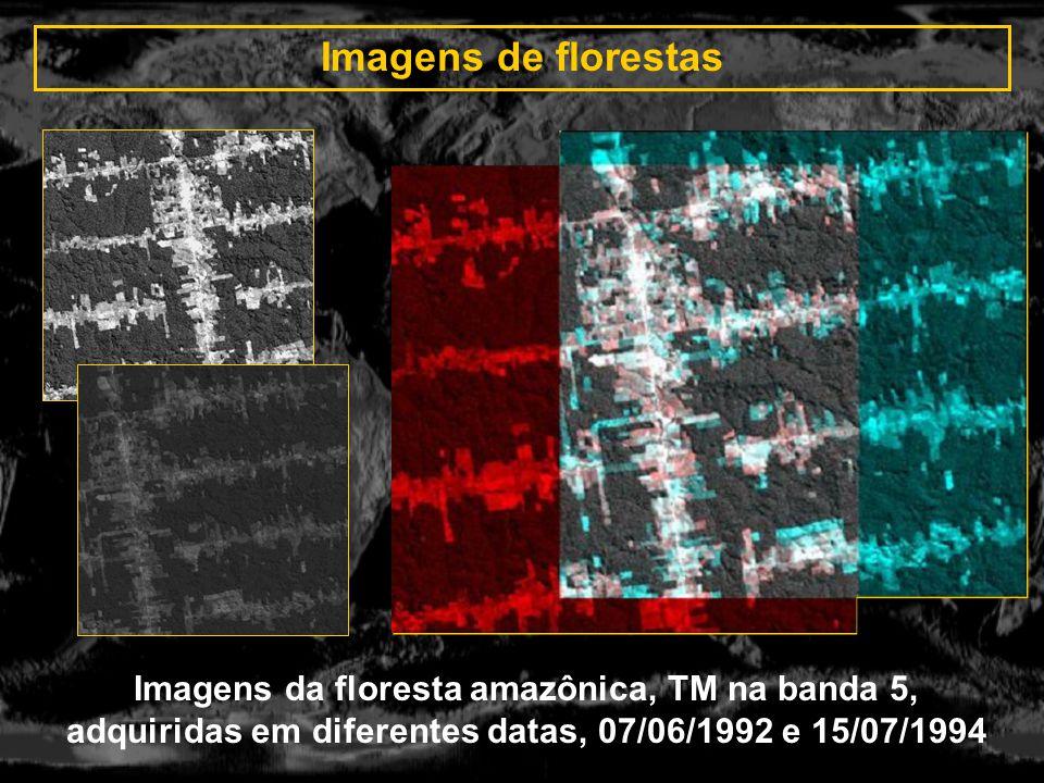Imagens de florestas Imagens da floresta amazônica, TM na banda 5, adquiridas em diferentes datas, 07/06/1992 e 15/07/1994