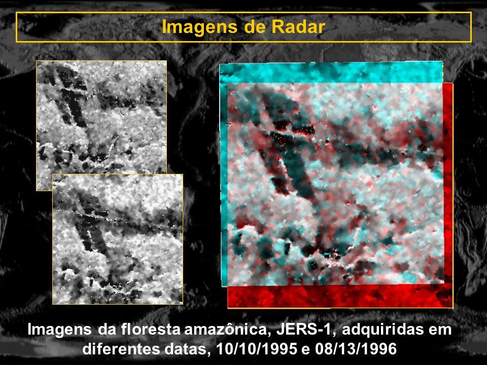 Imagens de Radar Imagens da floresta amazônica, JERS-1, adquiridas em diferentes datas, 10/10/1995 e 08/13/1996