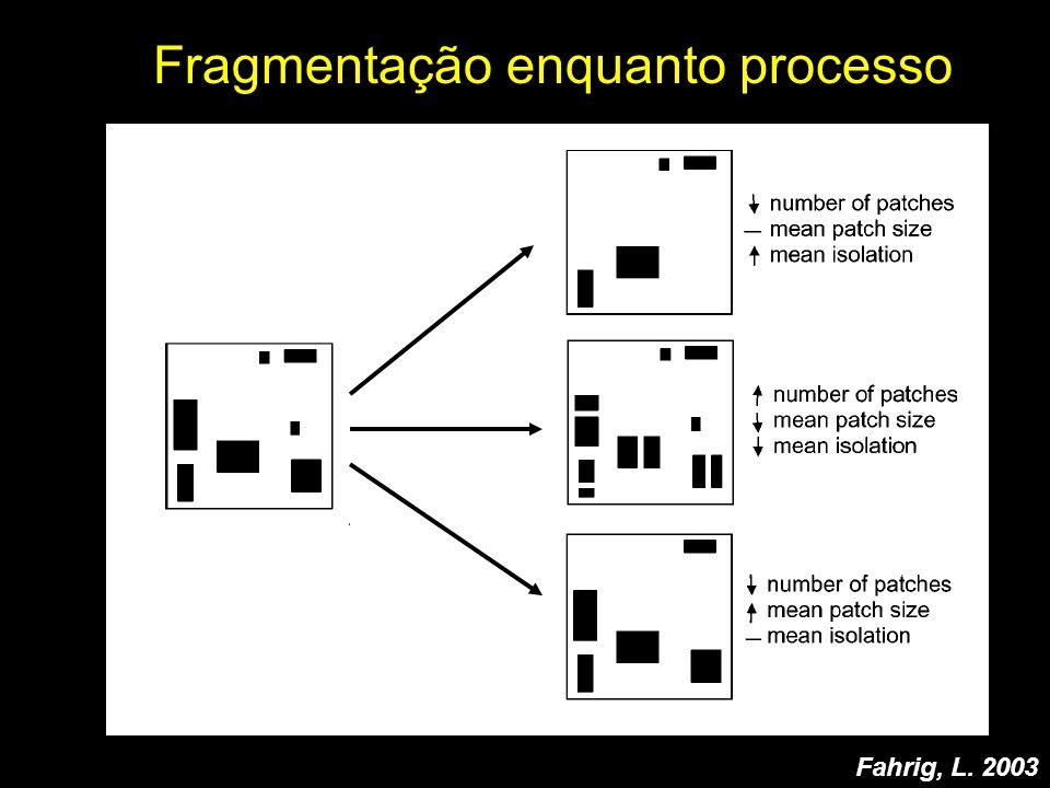 Fragmentação enquanto processo Fahrig, L. 2003