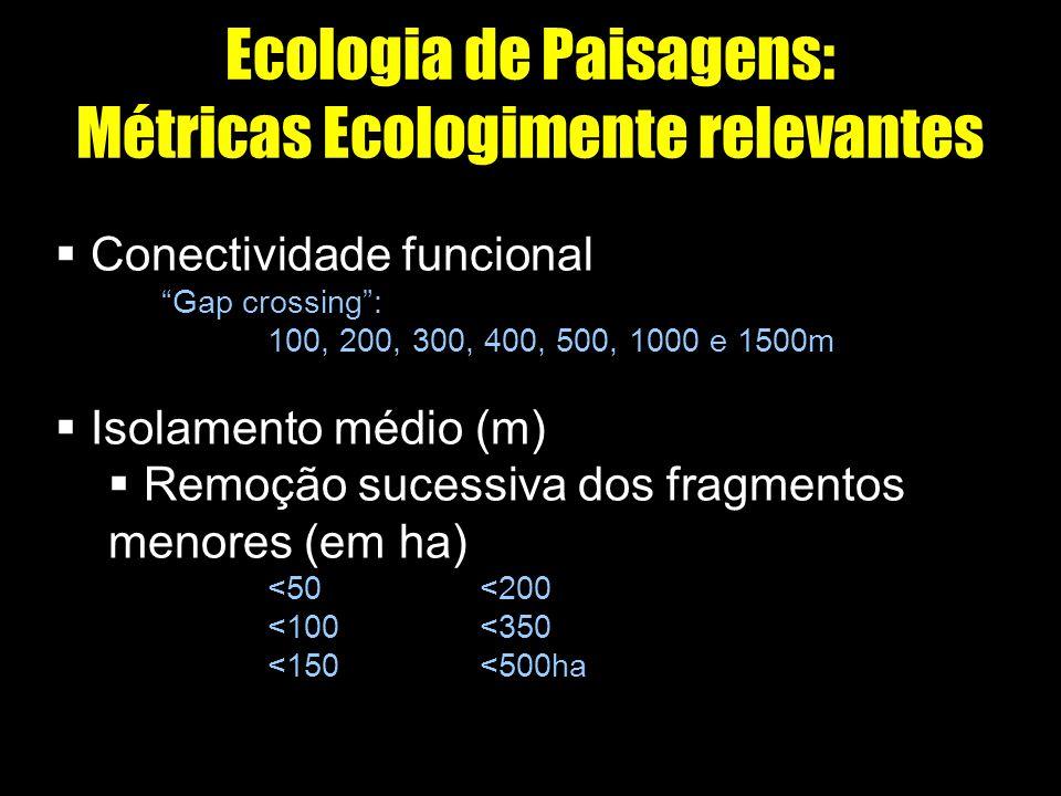 Ecologia de Paisagens: Métricas Ecologimente relevantes Conectividade funcional Gap crossing: 100, 200, 300, 400, 500, 1000 e 1500m Isolamento médio (