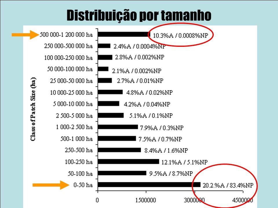 Distribuição por tamanho