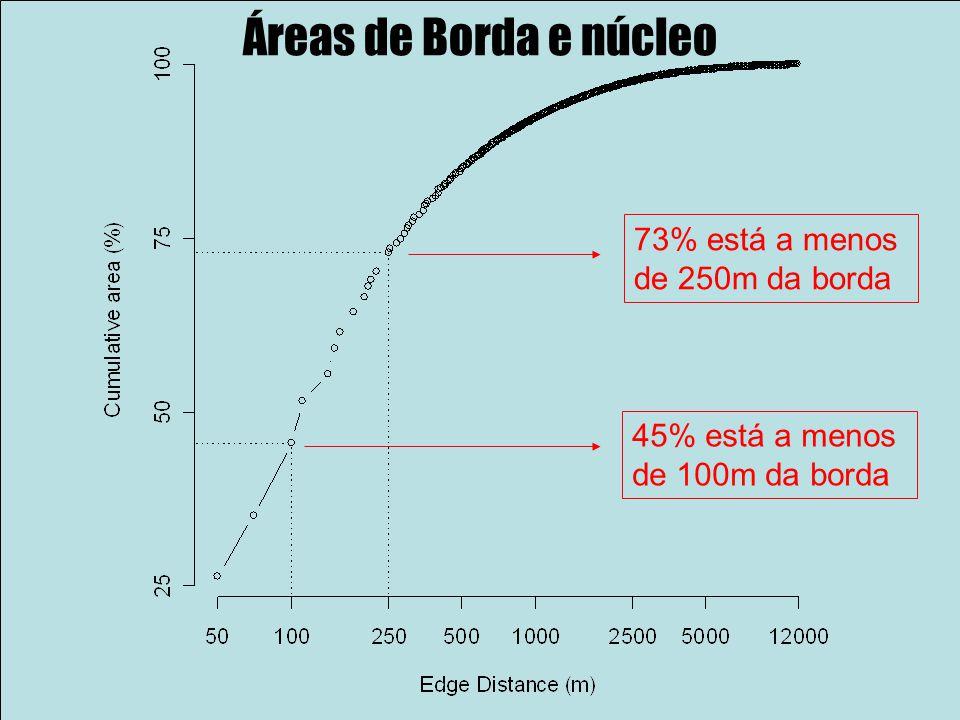 Áreas de Borda e núcleo 45% está a menos de 100m da borda 73% está a menos de 250m da borda