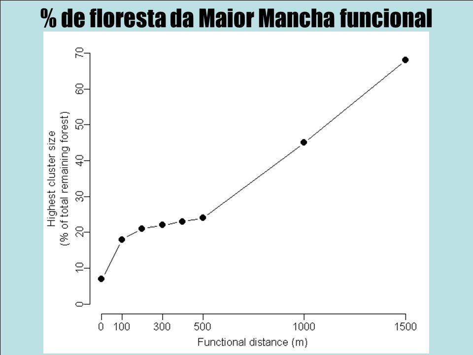 % de floresta da Maior Mancha funcional