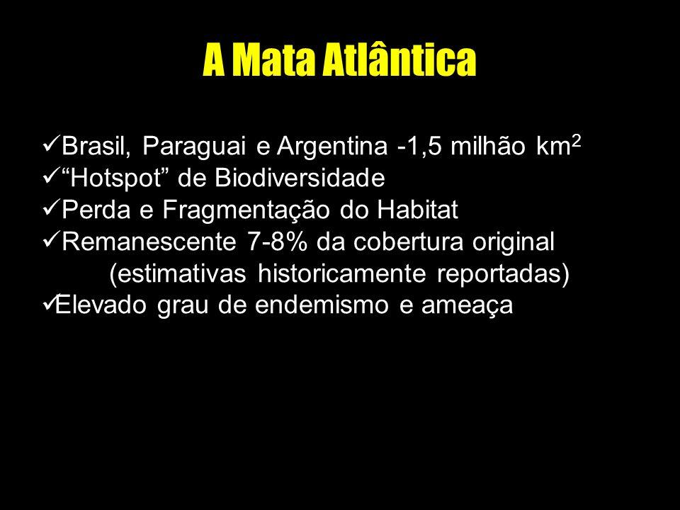 A Mata Atlântica Brasil, Paraguai e Argentina -1,5 milhão km 2 Hotspot de Biodiversidade Perda e Fragmentação do Habitat Remanescente 7-8% da cobertur