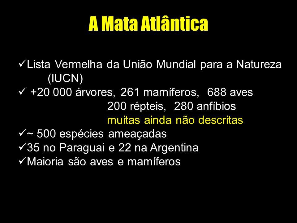 A Mata Atlântica Lista Vermelha da União Mundial para a Natureza (IUCN) +20 000 árvores, 261 mamíferos, 688 aves 200 répteis, 280 anfíbios muitas aind
