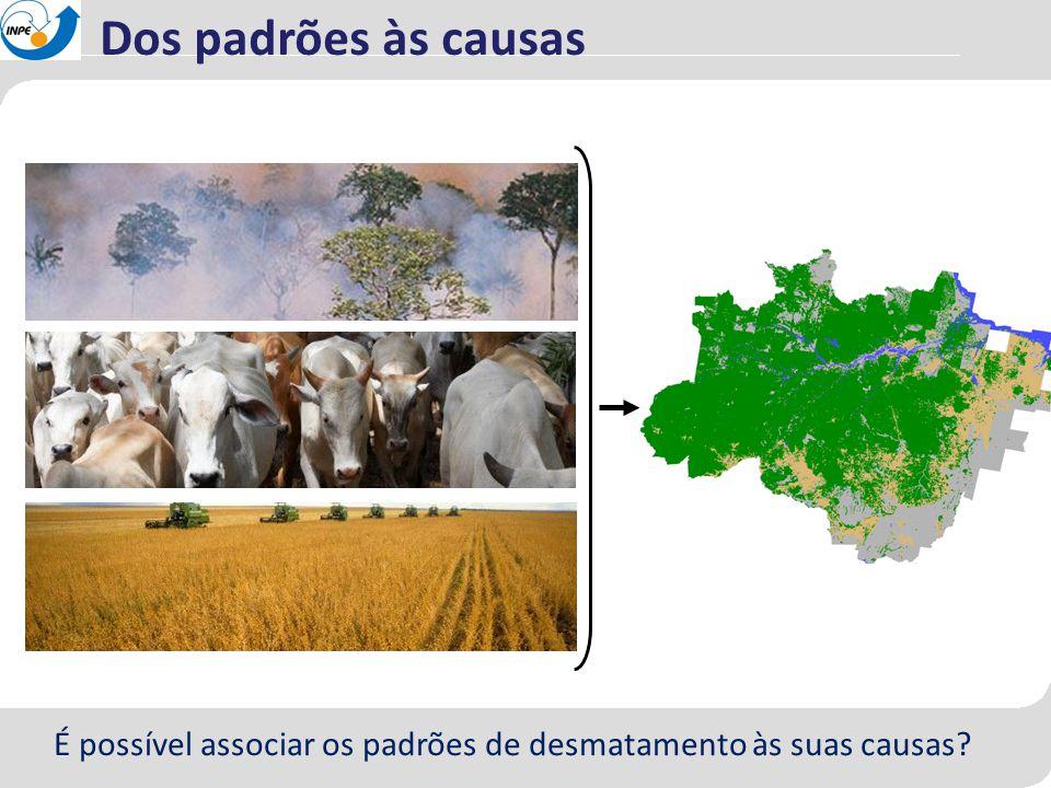 Dos padrões às causas É possível associar os padrões de desmatamento às suas causas?