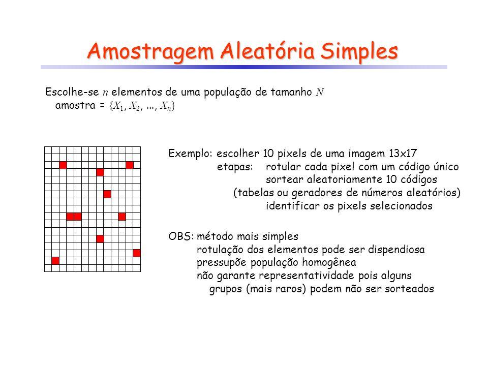 Amostragem Aleatória Simples Escolhe-se n elementos de uma população de tamanho N amostra = {X 1, X 2,..., X n } Exemplo: escolher 10 pixels de uma im