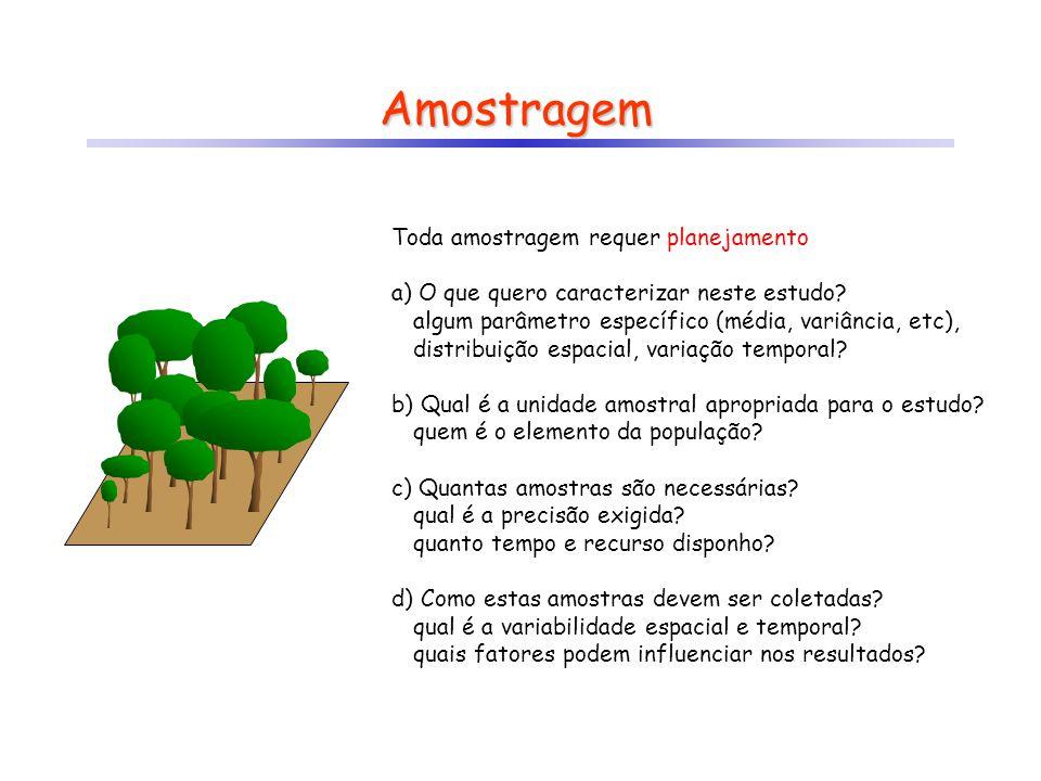Unidade Amostral A unidade amostral representa a menor entidade identificada na população e é considerada o objeto de estudo.