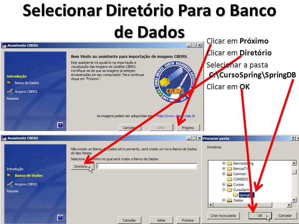 Selecionar Diretório Para o Banco de Dados Clicar em Próximo Clicar em Diretório Selecionar a pasta C:\CursoSpring\SpringDB Clicar em OK