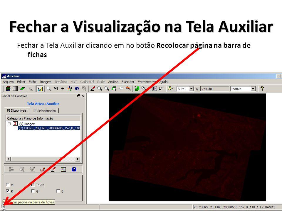 Fechar a Visualização na Tela Auxiliar Fechar a Tela Auxiliar clicando em no botão Recolocar página na barra de fichas