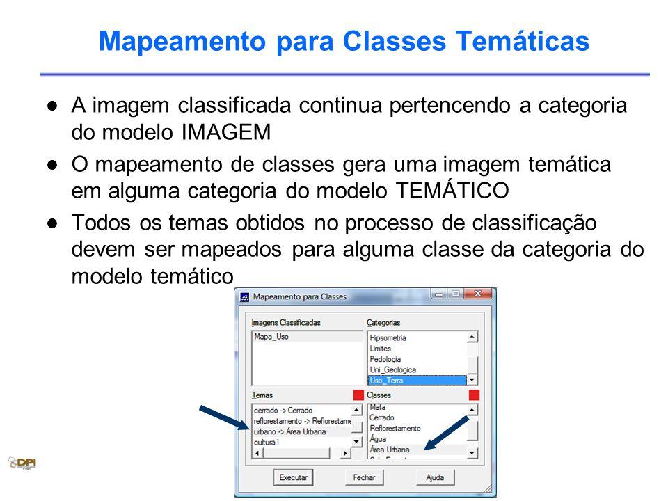 Mapeamento para Classes Temáticas A imagem classificada continua pertencendo a categoria do modelo IMAGEM O mapeamento de classes gera uma imagem temática em alguma categoria do modelo TEMÁTICO Todos os temas obtidos no processo de classificação devem ser mapeados para alguma classe da categoria do modelo temático