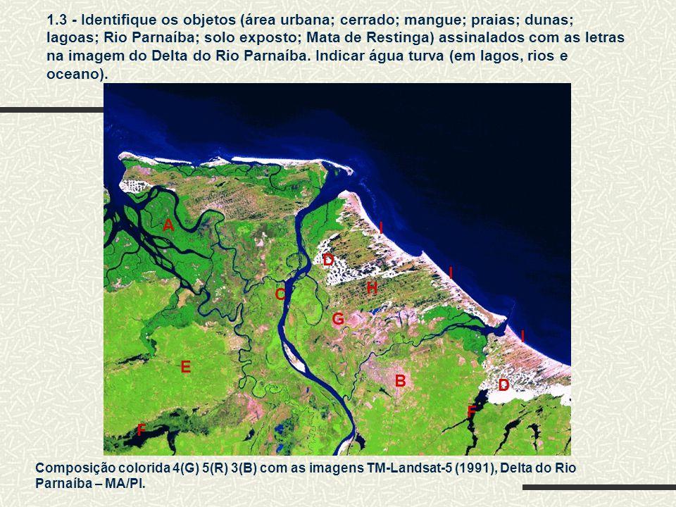 Composição colorida 4(G) 5(R) 3(B) com as imagens TM-Landsat-5 (1991), Delta do Rio Parnaíba – MA/PI.