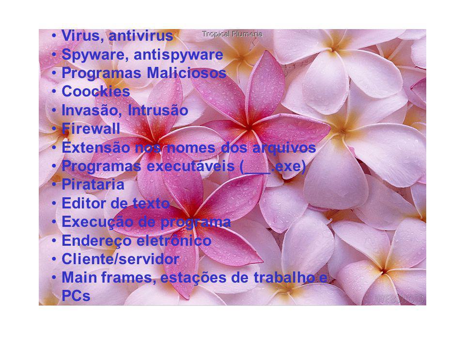 Virus, antivirus Spyware, antispyware Programas Maliciosos Coockies Invasão, Intrusão Firewall Extensão nos nomes dos arquivos Programas executáveis (___.exe) Pirataria Editor de texto Execução de programa Endereço eletrônico Cliente/servidor Main frames, estações de trabalho e PCs