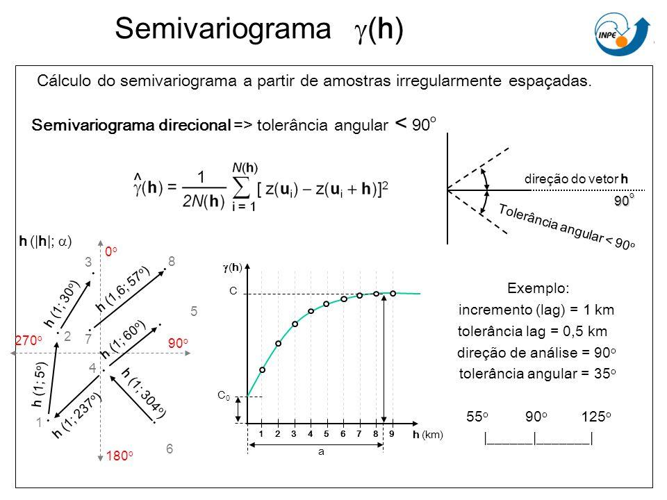 Semivariograma (h) Cálculo do semivariograma a partir de amostras irregularmente espaçadas. Semivariograma direcional => tolerância angular < 90 o h (