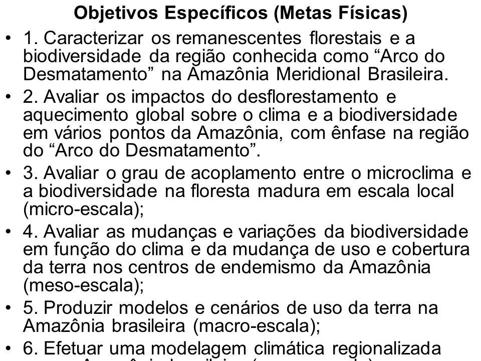 CENÁRIOS PARA A AMAZÔNIA: USO DA TERRA, BIODOVERSIDADE E CLIMA Metodologia básica: trabalhar em três escalas (micro, meso e macro-escala) para elaborar cenários sobre a conservação da biodiversidade nos centros de endemismos sob maior ameaça, frente às mudanças do uso da terra na região (Região do Arco do Desmatamento).